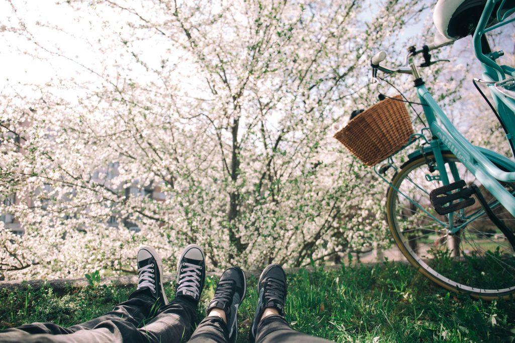 Ein blühender Baum und eine Fahrradtour sorgen in deiner Freizeit für Glücksmomente.